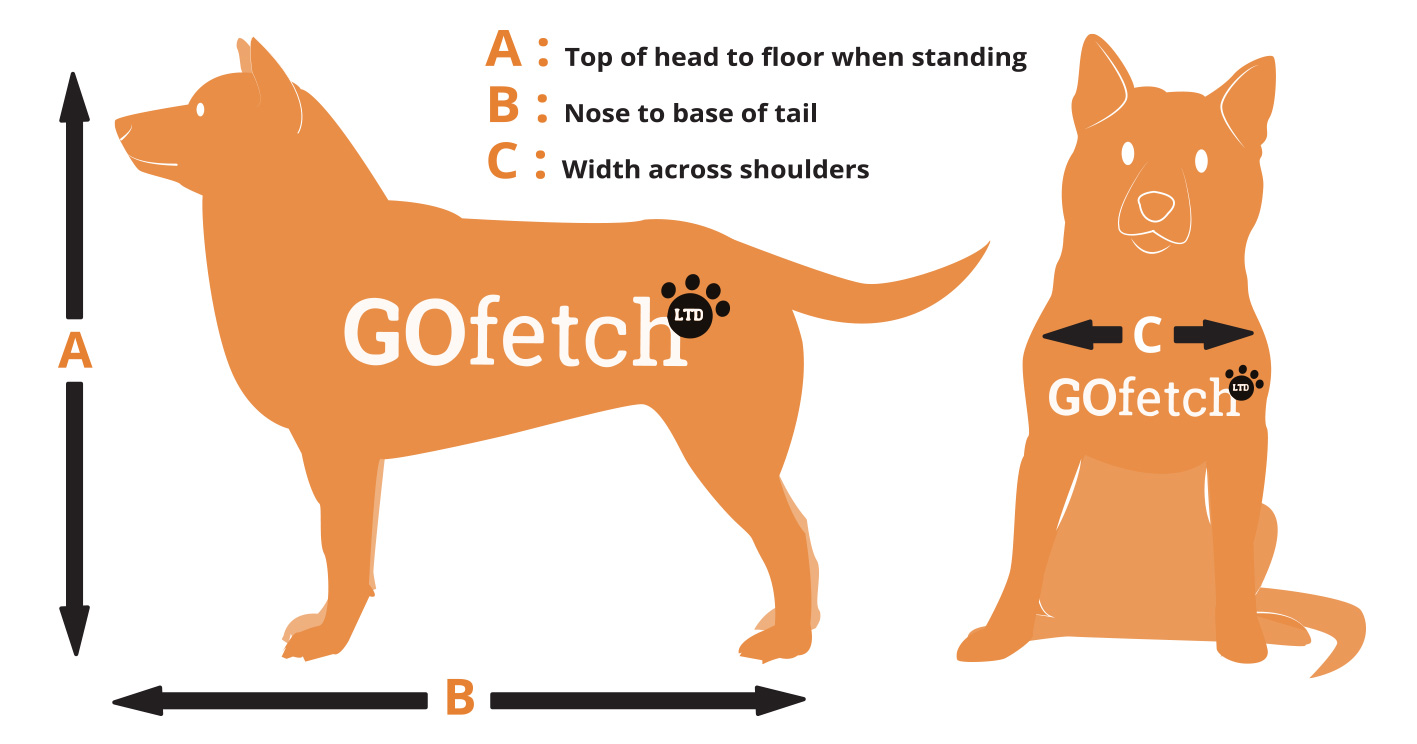 How to measure your dog for transport GoFetch